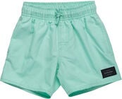 Rip Curl Wipeout Volley Shorts Badebukser, Mint
