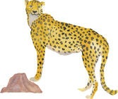 That's Mine Wallsticker Cheetah