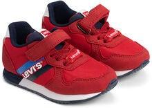 542dbc80505 Levi's Springfield Mini Sneakers, Red/Navy