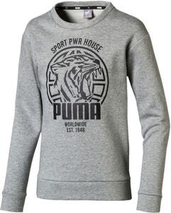 Puma Alpha Graphic Crew Trøje, Medium Grey Hea